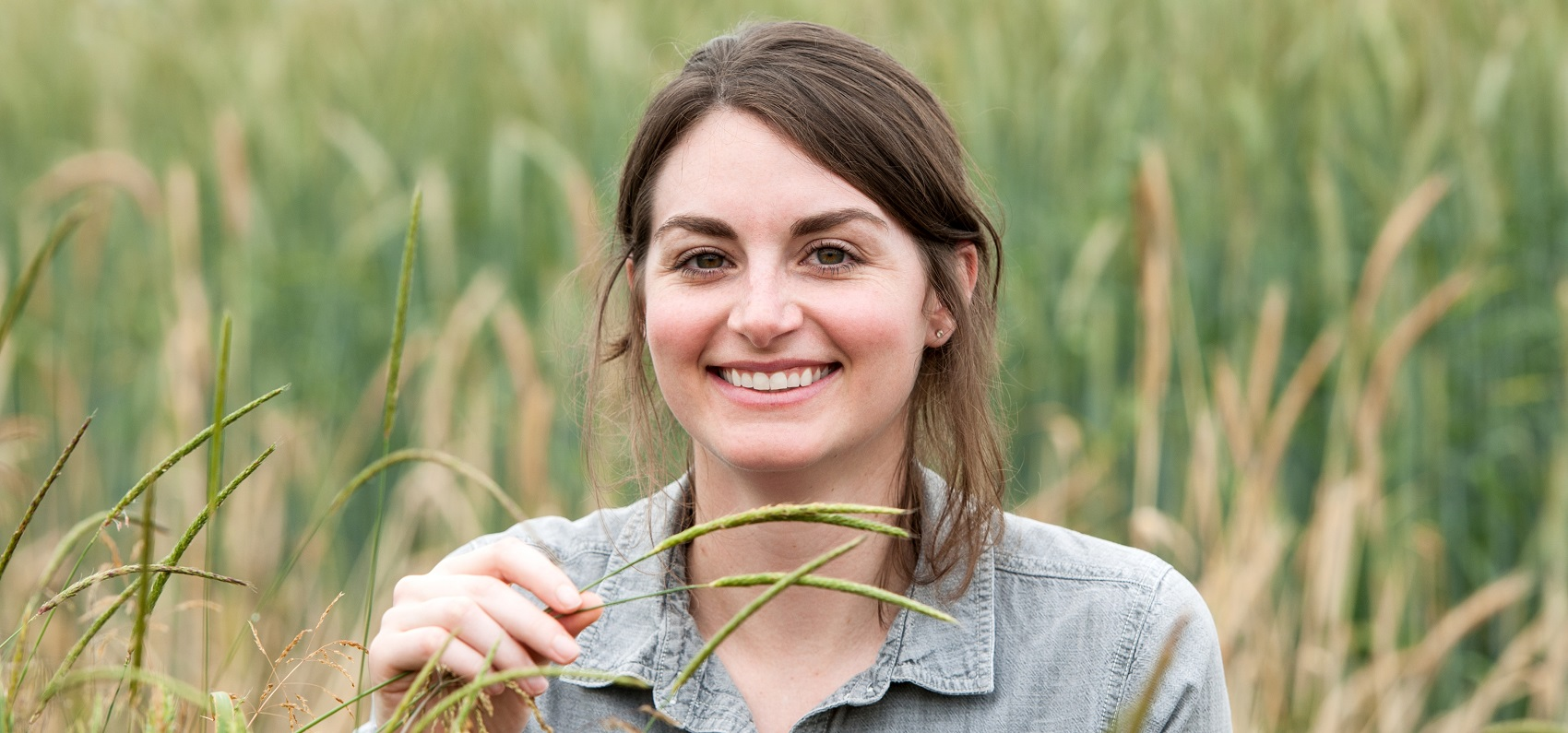 Andrea Dixon 3 - copyright Rothamsted Research