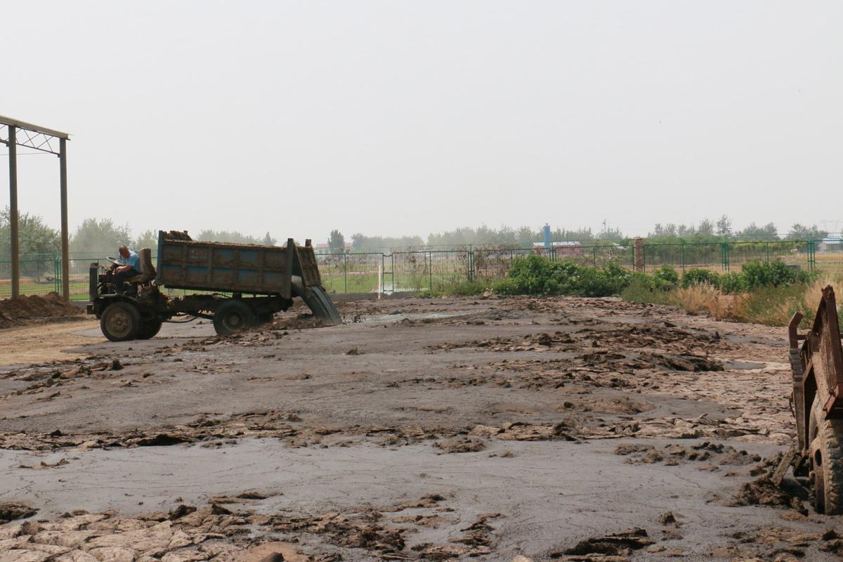 China manure storage Credit: Wang Xuan