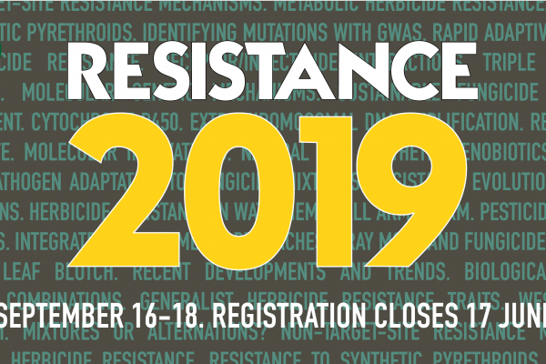 Rothamsted Resistance 2019