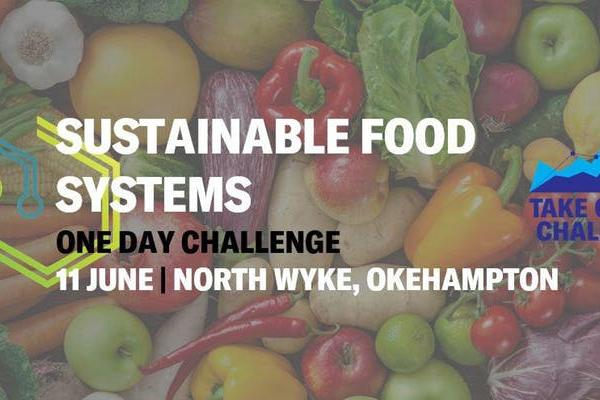 Impact Lab Sustainable Systems Challenge