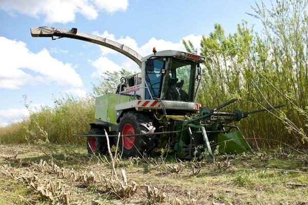 Willow Harvester – Modified Claas Jaguar 850