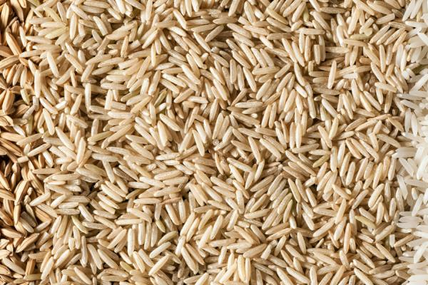 Rice Grains - Credit Rothamsted Research