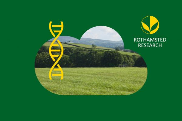 RothRes website listings - credit Rothamsted Research